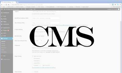Content management systems (CMS) are our best way to put you in control of regular site updating