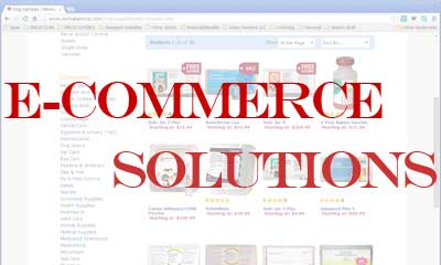 We can provide an ecommerce solution of any scope tailored to your precise needs.